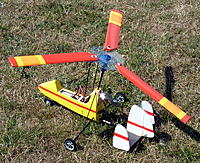 Name: tri_hex_P1030255.jpg Views: 142 Size: 198.4 KB Description: First flight with the hex-plate and three blades.