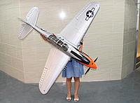 Name: p40model.jpg Views: 189 Size: 82.7 KB Description: