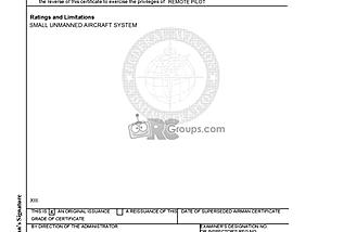 My temporary Remote Pilot certificate