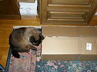 Name: 1.jpg Views: 288 Size: 298.9 KB Description: Inspection upon receipt by Momo