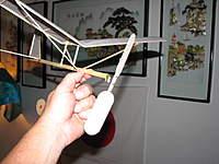 Name: IMG_0351.jpg Views: 264 Size: 51.1 KB Description: Hangar rat
