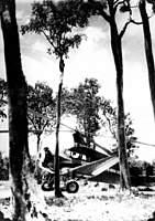 Name: pitcairn_year_round_club.jpg Views: 114 Size: 82.8 KB Description: