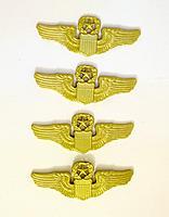 Name: wings 500.jpg Views: 137 Size: 257.0 KB Description: commander pilot wings