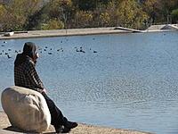Name: 1-5-13 046.jpg Views: 29 Size: 301.0 KB Description: Curt Enjoying the Scenery...