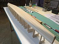Name: IMG_1732.jpg