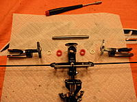 Name: P7280025.jpg