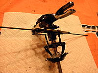 Name: P7280026.jpg