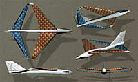 Name: X1- diamond wing.jpg