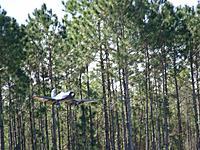 Name: corsair landing.jpg Views: 107 Size: 311.0 KB Description: