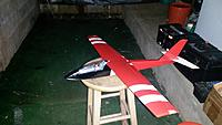 Name: storm petrel.jpg