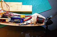 Name: DSC_7040.jpg