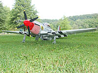 Name: P-51 Mustang_Photoshoot_5-30-20100000.jpg