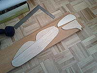 Name: Tail_Sheeted.jpg