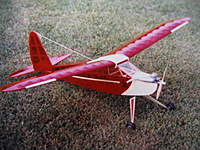 Name: RC model planes 007.jpg