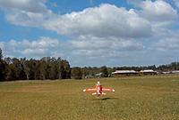 Name: Hawk lift off.JPG Views: 17 Size: 79.5 KB Description: