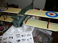 Name: P1090877.jpg
