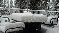 Name: snow.jpg Views: 44 Size: 108.9 KB Description:
