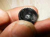 Name: Pegasus 070.jpg