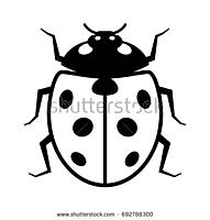 Name: Lady bug.jpg