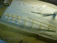 Name: HPIM2505.jpg