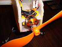 Name: DSC00907.jpg