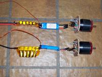 Name: beech 596.jpg