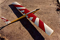 Name: Sig Samurai.jpg