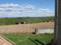 Name: farm 2 (2304 x 1728).jpg Views: 275 Size: 100.9 KB Description: