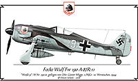 Name: fw190_migge.jpg