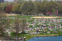 Name: Central Park.jpg Views: 304 Size: 146.9 KB Description: No place to land except the lake.