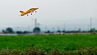 Name: DSC_0337.jpeg
