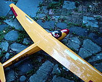 Name: KA8B-SEAGULL MODELS 003.jpg