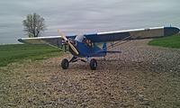 Name: cub20124.jpg