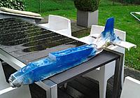 Name: Twinstar 2.jpg Views: 329 Size: 214.3 KB Description: Blue coat