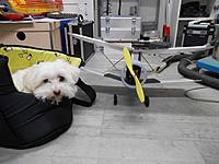 Name: DSCN4930.JPG