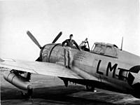 Name: rsjd P-47D 42-25512 LM-Q Penrod and Sam rsj1.jpg Views: 203 Size: 35.8 KB Description: