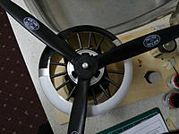 Name: P1000803.jpg