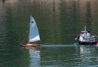 Name: Jul27-18.jpg Views: 332 Size: 100.9 KB Description: Marc's freesailing cat.