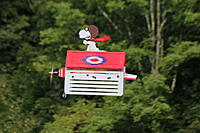 Name: IMG_3390.JPG