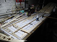Name: IMG_9995.jpg
