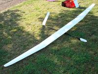 Name: Mantis.jpg