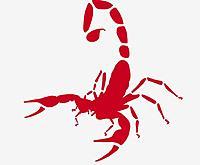 Name: Scorpion2.jpg Views: 222 Size: 32.0 KB Description: