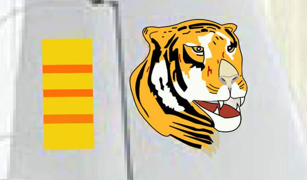 Name: Tiger (Detail).jpg Views: 207 Size: 29.1 KB Description: