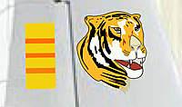 Name: Tiger (Detail).jpg Views: 202 Size: 29.1 KB Description: