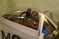 Name: pilot_painted01.jpg Views: 193 Size: 123.8 KB Description:
