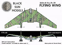 Name: BV-38FlyingWingBoxArt.jpg