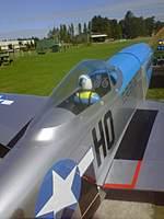 Name: Victors P51 Bluenose Maiden.jpg Views: 68 Size: 60.1 KB Description: