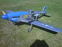 Name: Victors P51 Bluenose Maiden2.jpg Views: 90 Size: 92.9 KB Description: