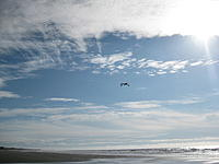 Name: IMG_7111.jpg