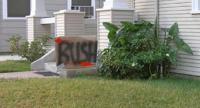 Name: bush.jpg Views: 303 Size: 18.8 KB Description: